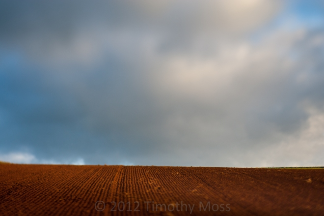 Clouds-fields-sky-lensbaby