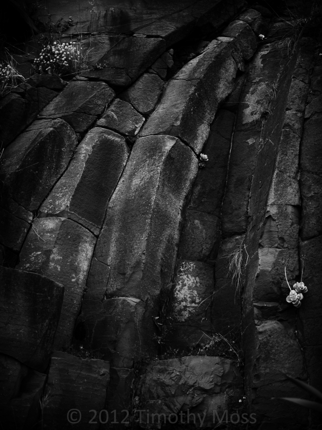 basalt-black-and-white-columns